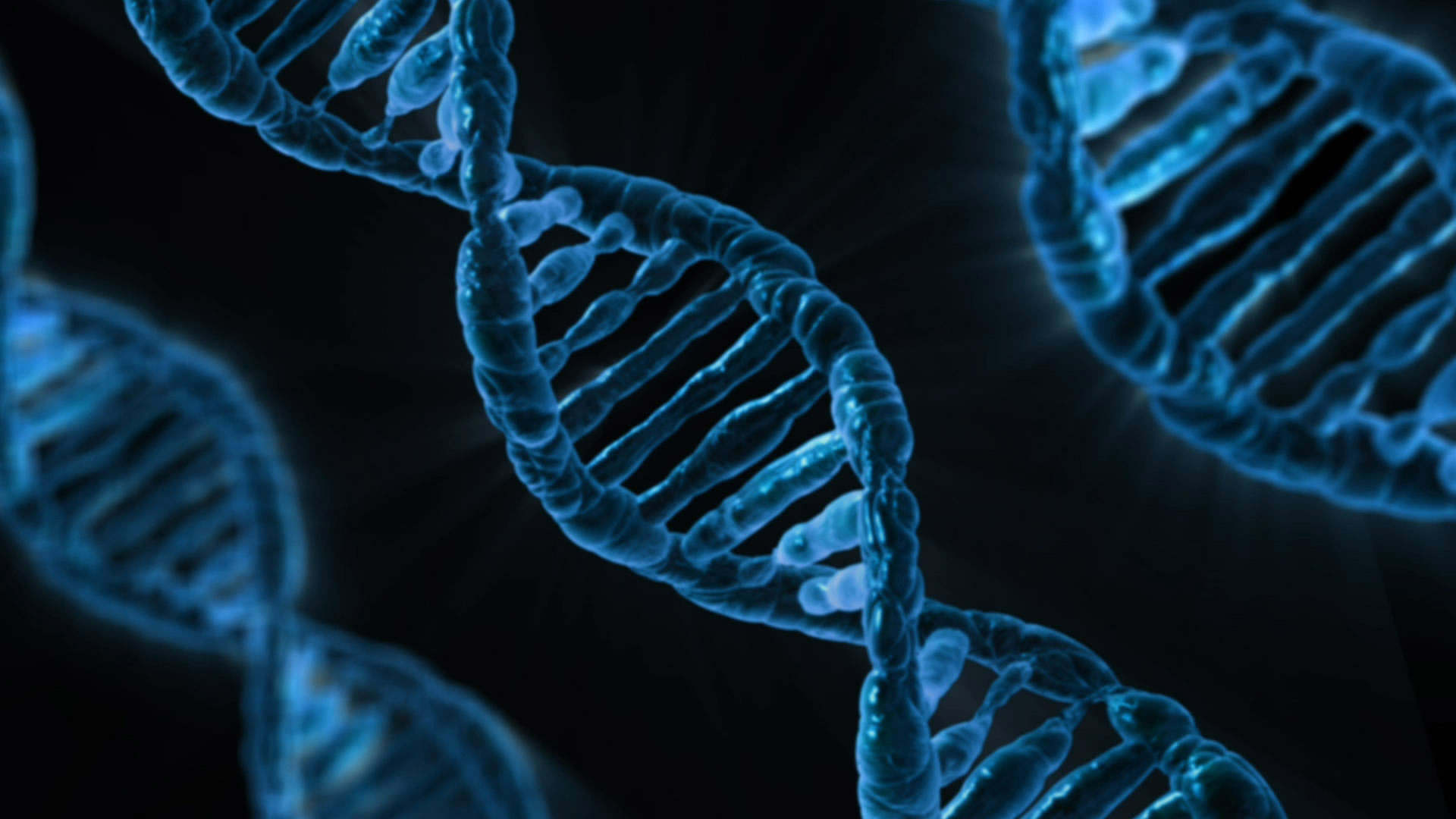 Epilepsy Genetic Initiative